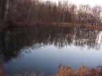 Gewässer 2006